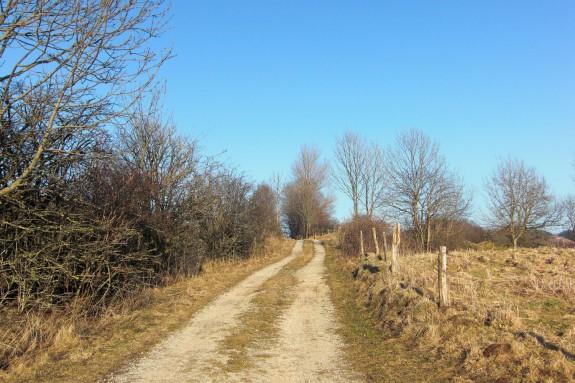 Shodoka-Zen-Training für hellwache Präsenz
