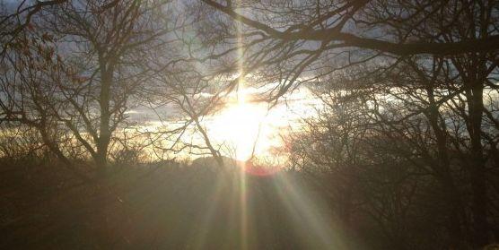 Zenpower - Hellwache Präsenz durch klare Aufmerksamkeit
